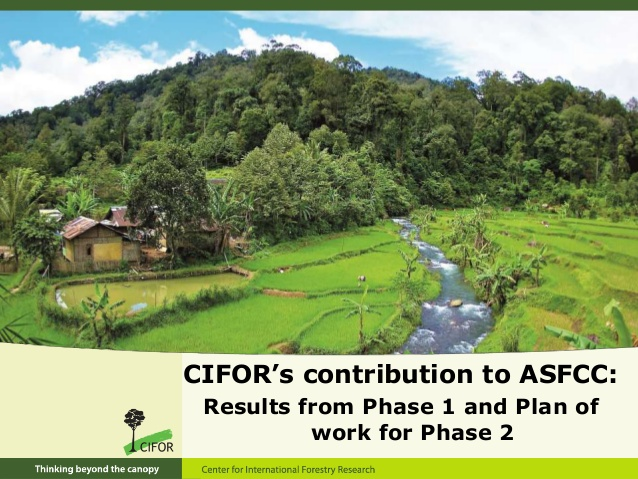 http://www.slideshare.net/CIFOR/cifors-contribution-to-asfcc-results-from-phase-1-and-plan-of-work-for-phase-2