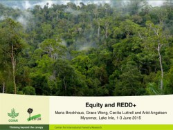 http://www.slideshare.net/CIFOR/equity-and-redd-perspectives-from-cifors-global-comparative-study