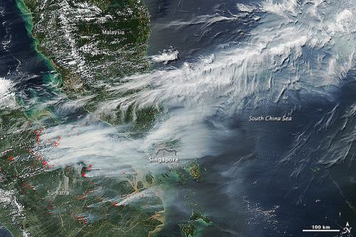 Research by the Center for International Forestry Research into the 2013 Sumatra fires has indicated that nearly a quarter burned in industrial oil palm and acacia plantations, and very few took place in natural forests. Picture Credit: NASA image by Jeff Schmaltz, LANCE/EOSDIS Rapid Response, NASA Earth Observatory