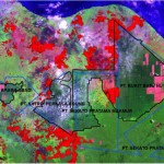 Remote sensing analyses of the Giam Siak Kecil-Bukit Batu biosphere reserve, indicating June 2013 fires in bright red, located inside forest reserves, planted forests and in transition zones. See here for more detail.