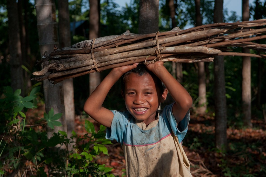 A boy collects firewood in East Nusa Tenggara, Indonesia. The importance of forests to energy and livelihoods make them crucial for inclusion in the Sustainable Development Goals. CIFOR photo