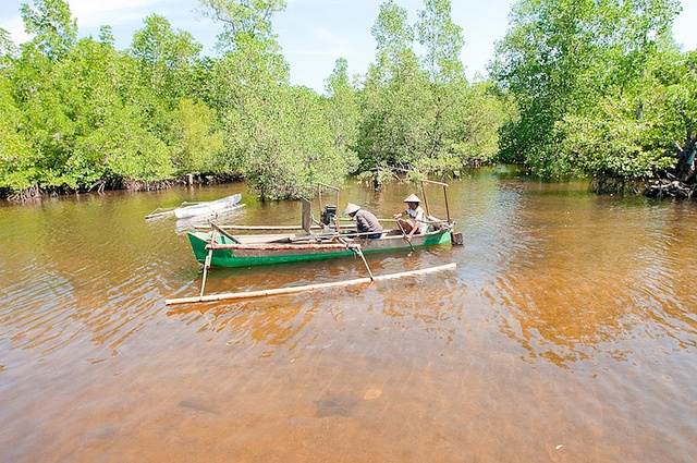 Tropical mangrove forests, which grow in estuaries and intertidal areas between land and sea, help protect coastal areas from erosion and inland areas from high waves. CIFOR/Moses Ceaser