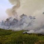 fires_hazard_research