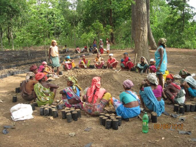 motherly women raising plant nursery