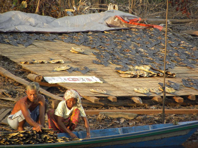 couple loading dried fish