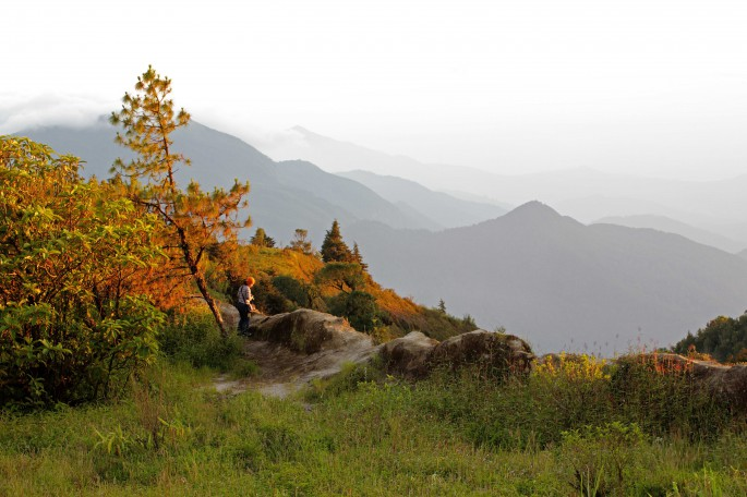 forested mountains by doi inthanon park