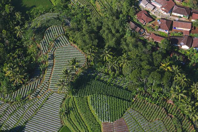 Aerial shoot of landscape around Halimun Salak National Park, West Java, Indonesia. Photo by Kate Evans/CIFOR.