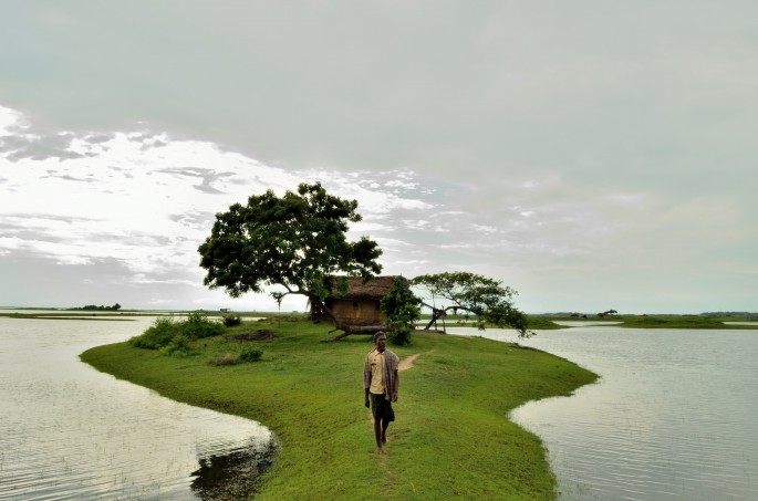 the rice farmer from chilika