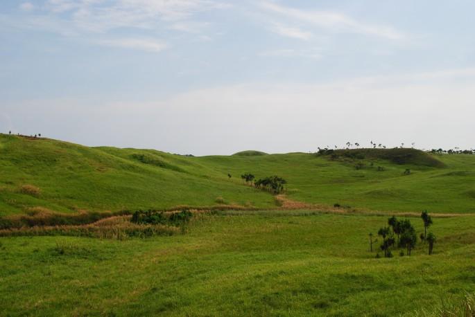 the unknown grasslands