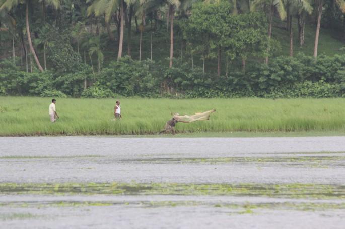 fishing at tsunami affected cultivated land at stewart gunj