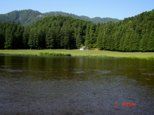 natural lake at khajjair himachal pradesh india