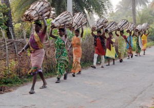 women carrying firewood for selling at the market