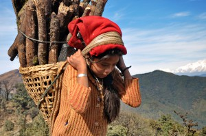 young girl carrying firewood for cooking
