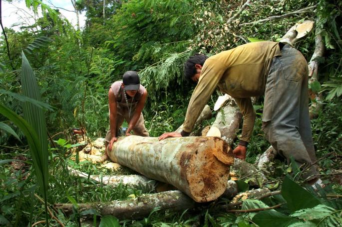 necessity based logging
