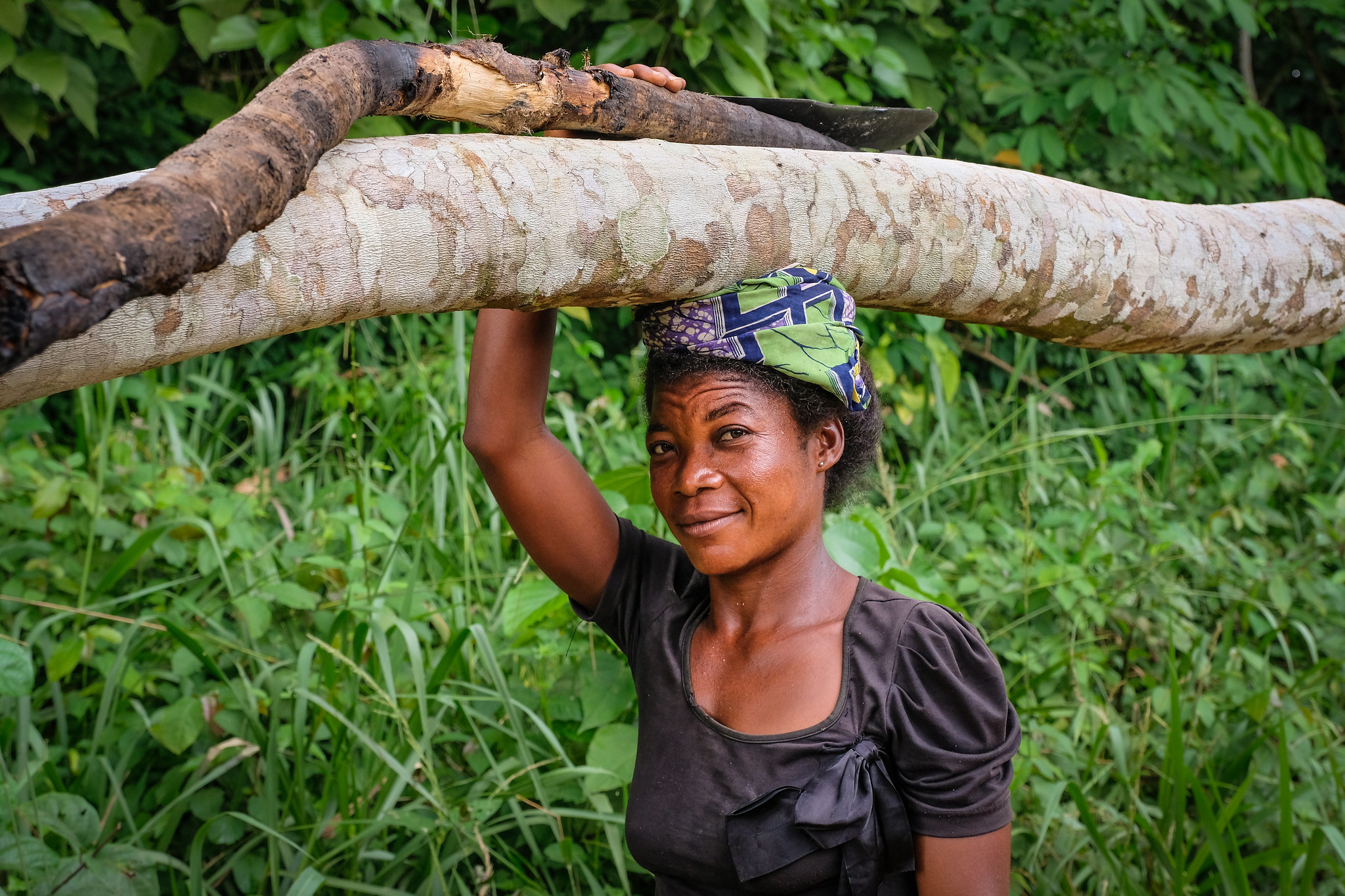 Can DRC's community forests lift people out of poverty?