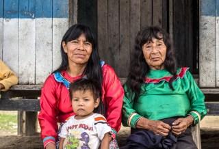 Reformas de tenencia forestal: Un espectro multicolor de desafíos
