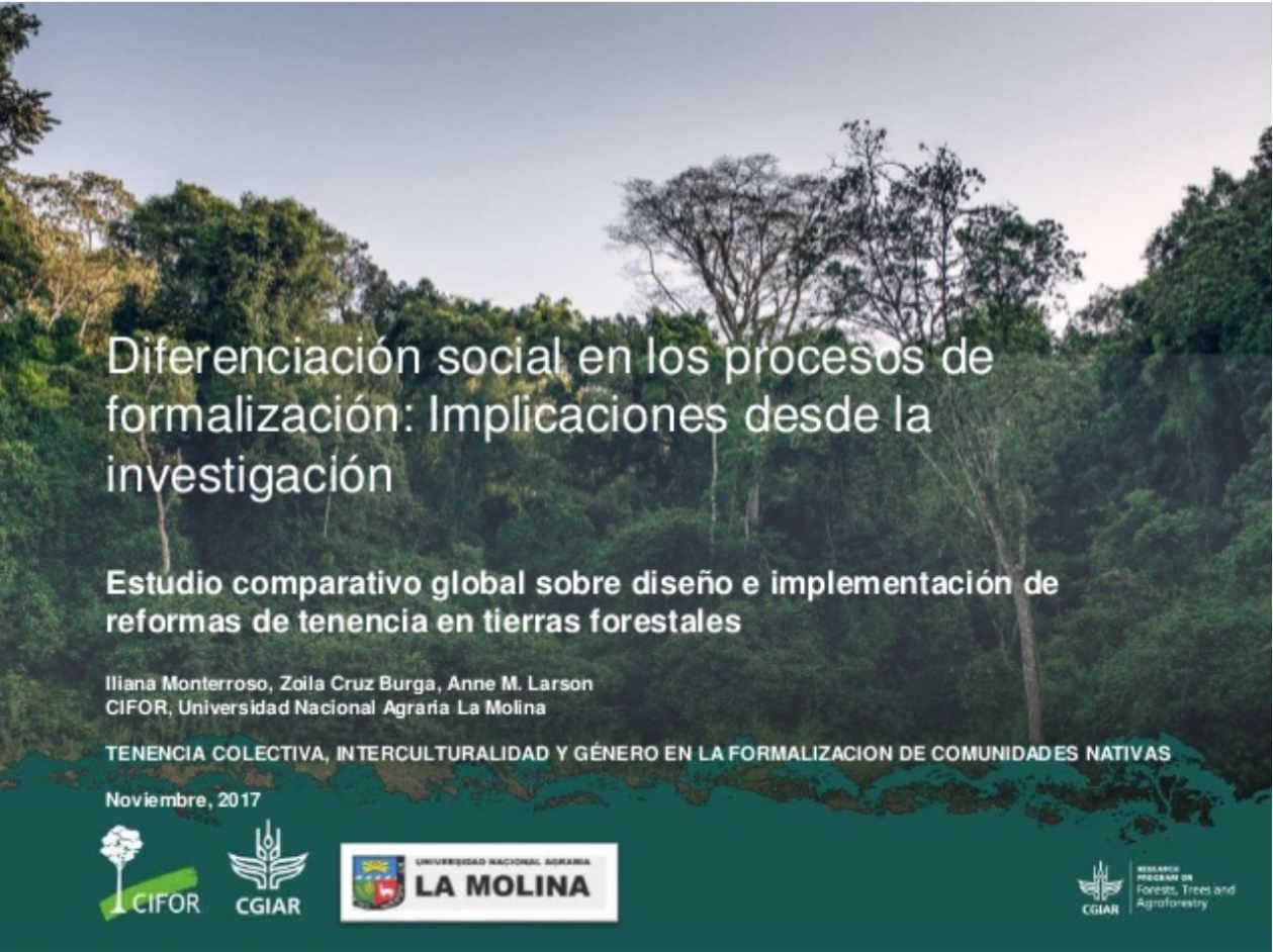 Diferenciación social en los procesos de formalización: Implicaciones desde la investigación