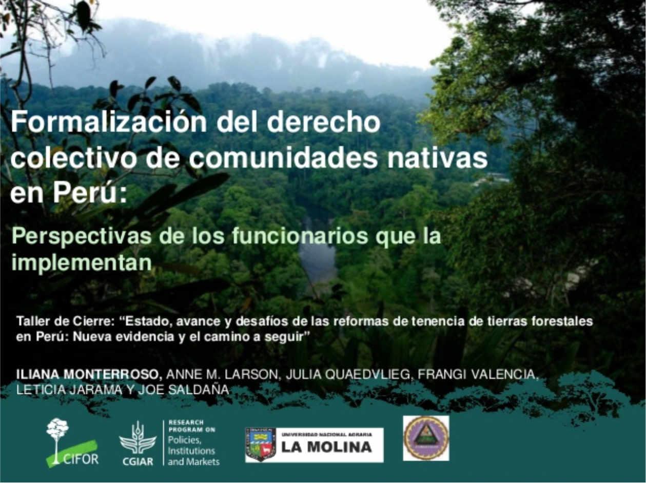 Formalización del derecho colectivo de comunidades nativas en Perú desde las perspectivas de funcionarios que las implementan