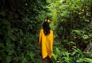 El largo camino hacia los derechos indígenas sobre la tierra y el bosque
