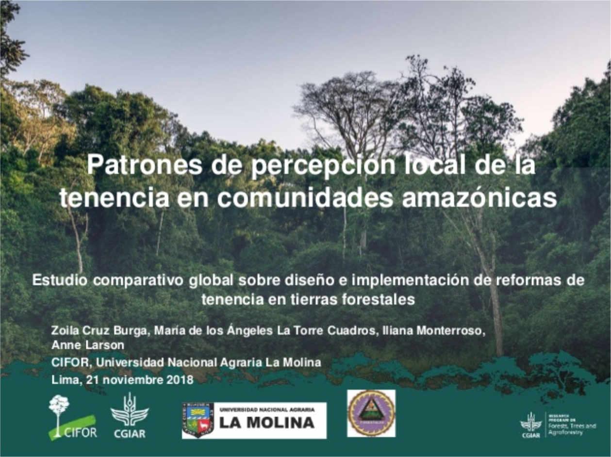 Patrones de percepción local de la tenencia en comunidades amazónicas