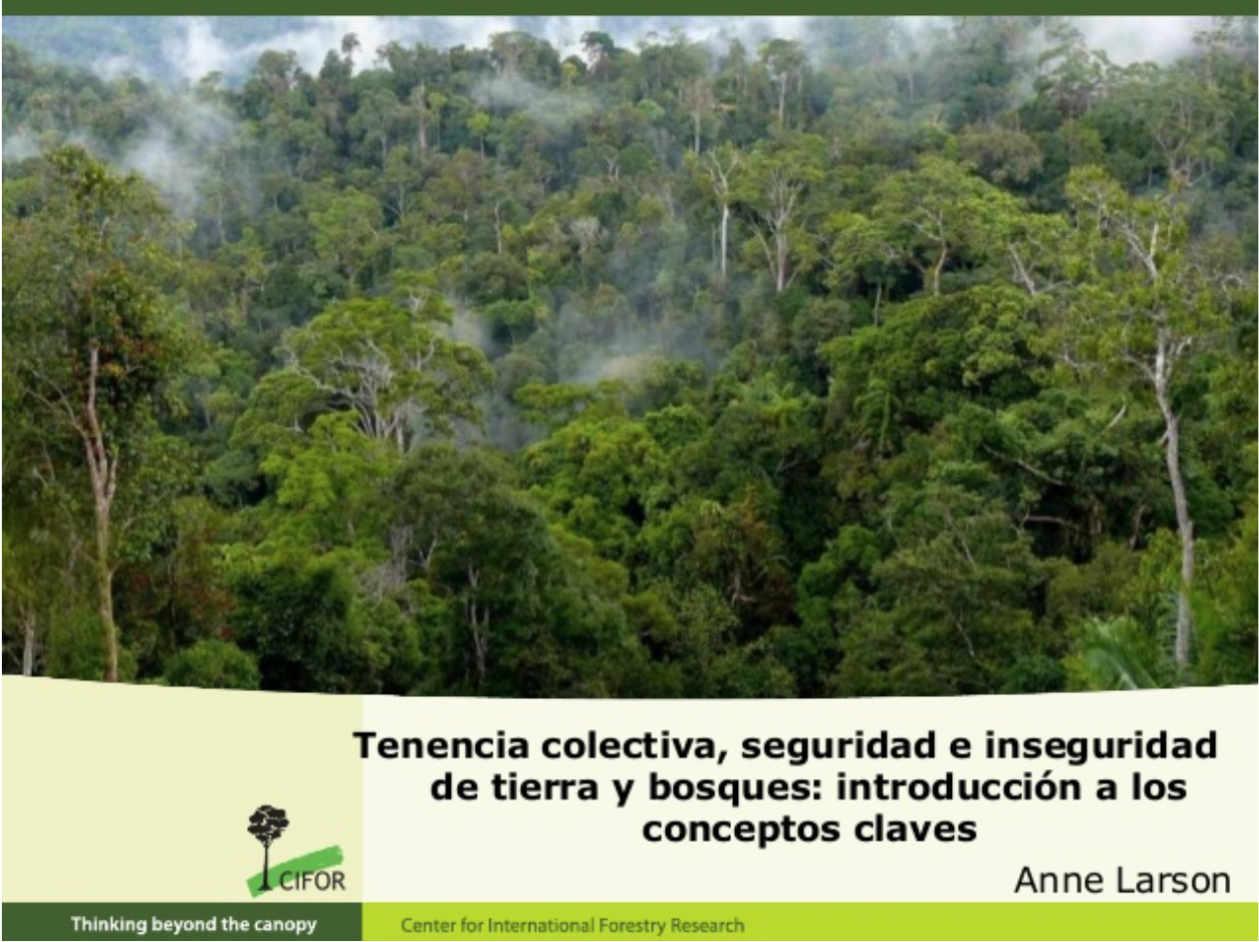 Tenencia colectiva, seguridad e inseguridad de tierra y bosques: introducción a los conceptos claves