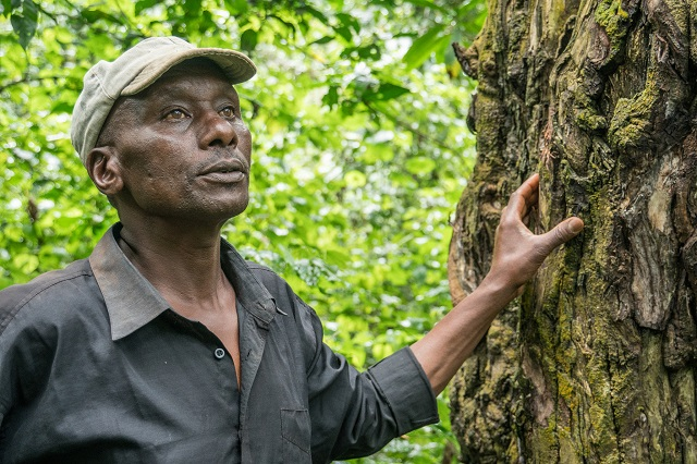 Forest tenure reform implementation in Uganda: Opportunities for the future
