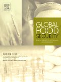 Agricultural intensification, dietary diversity, and markets in the global food security narrative