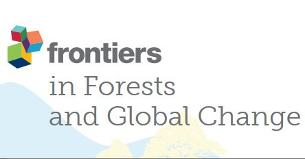 Forestry Decentralization in the Context of Global Carbon Priorities: New Challenges for Subnational Governments