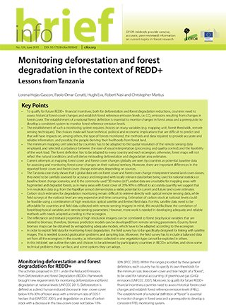 Monitoring deforestation and forest degradation in the context of REDD+: Lessons from Tanzania