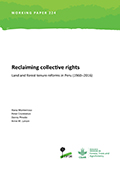 Reclaiming collective rights: land and forest tenure reforms in Peru (1960-2016)