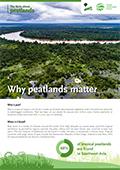 Why peatlands matter