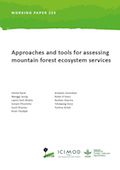 Approaches and tools for assessing mountain forest ecosystem services
