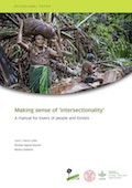 Making sense of 'intersectionality': A manual for lovers of people and forests