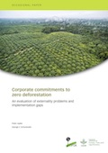 Corporate commitments to zero deforestation: An evaluation of externality problems and implementation gaps