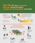 Oil palm and ecosystem services under different landscape management scenarios