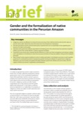 Gender and formalization of native communities in the Peruvian Amazon