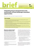 Integrating tenure and governance into assessments of forest landscape restoration opportunities