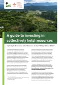 A guide to investing in collectively held resources