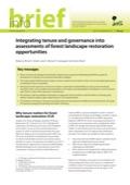 Integración de la tenencia y la gobernanza en las evaluaciones de oportunidades de restauración del paisaje forestal