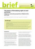 The impact of formalizing rights to land and forest: Indigenous community perspectives in Madre de Dios and Loreto