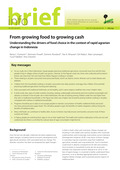 From growing food to growing cash: Understanding the drivers of food choice in the context of rapid agrarian change in Indonesia