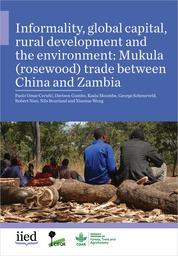 Informality, global capital, rural development and the environment: Mukula (rosewood) trade between China and Zambia