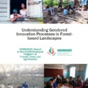 Understanding Gendered Innovation Processes in Forest-based Landscapes: Case studies from Indonesia and Kyrgyz Republic. GENNOVATE Report to the CGIAR Research Programs on Forests, Trees and Agroforestry (FTA)