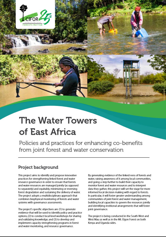 The Water Towers  of East Africa