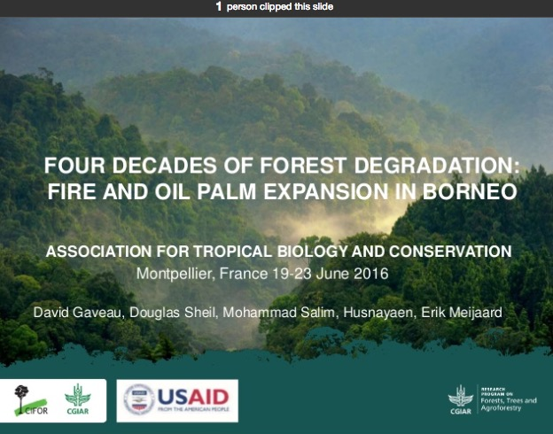 Four decades of forest degradation: Fire And oil palm expansion in Borneo